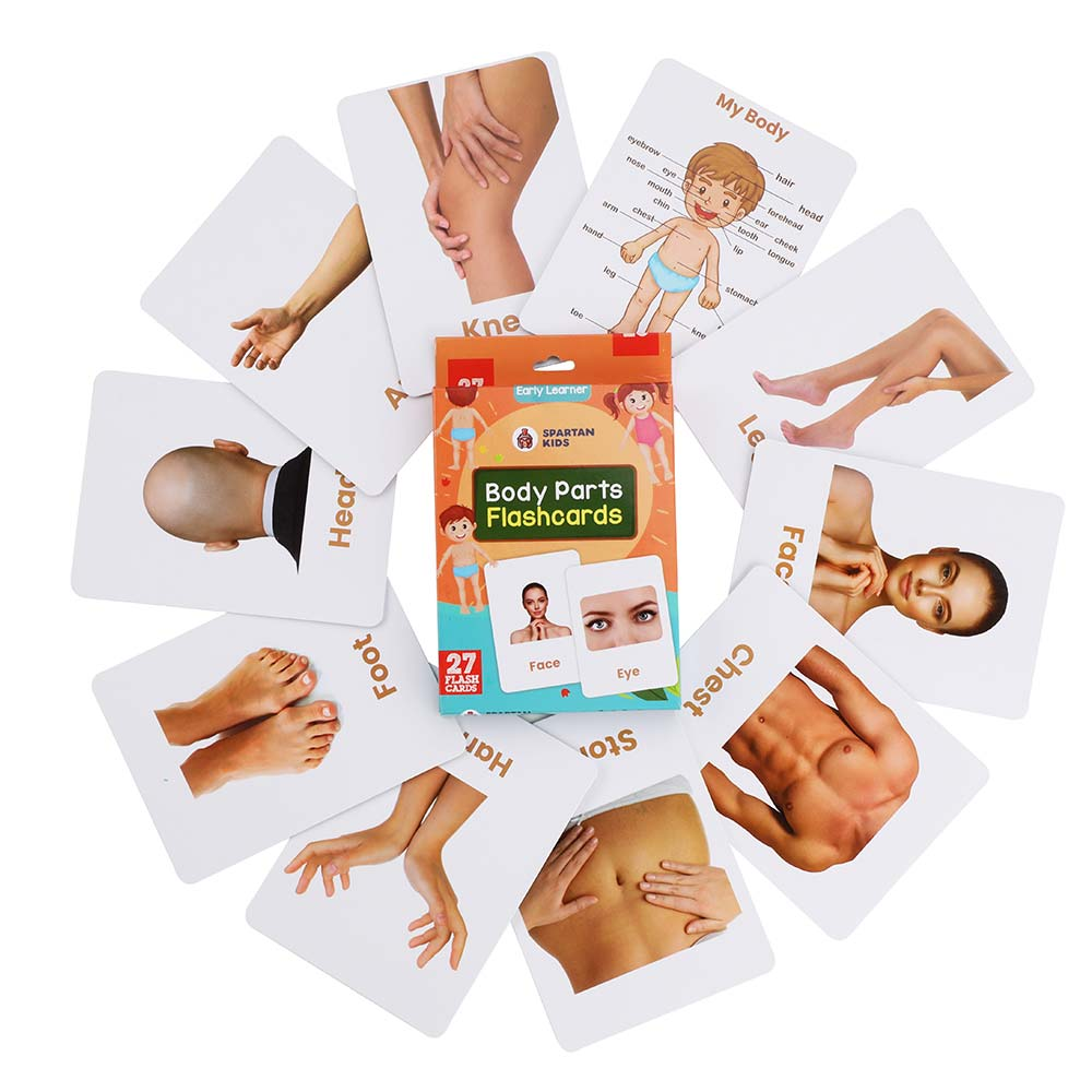 Body parts flash cards for kids